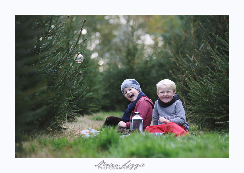 Capturing childhood in a Christmas tree forest