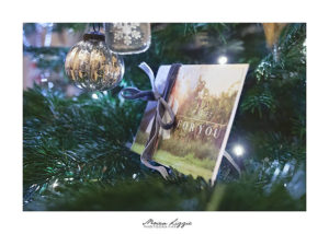 Christmas Gift Vouchers from Moira Lizzie Photography