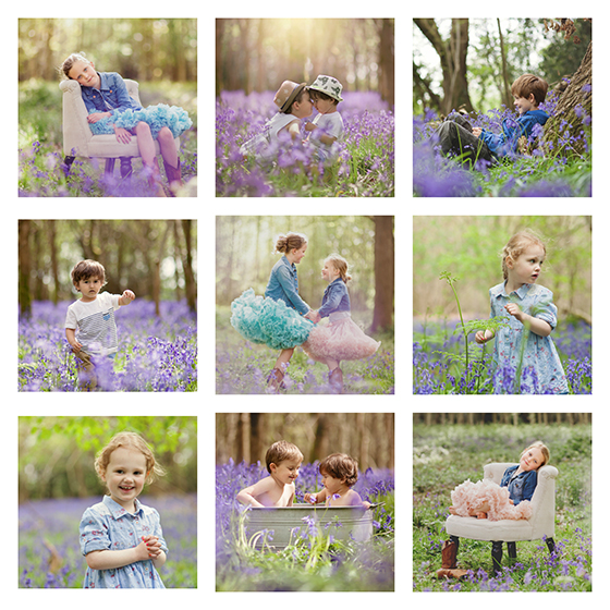 Collage of bluebell wood Spring photographs by Moira Lizzie Photography