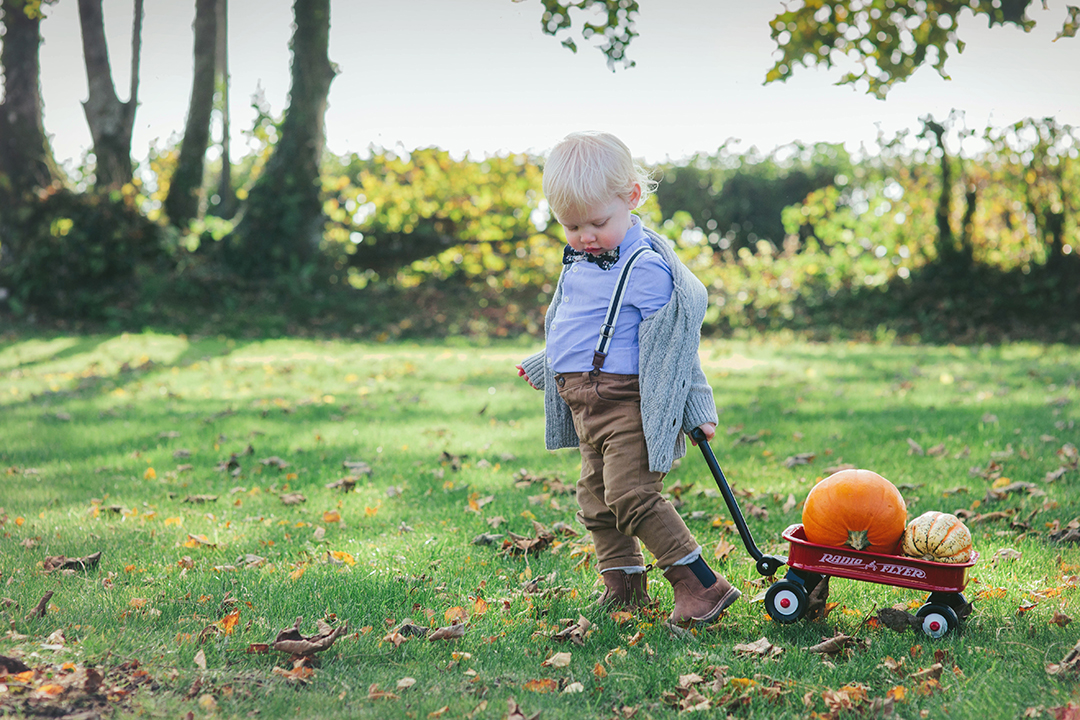 Toddler pulling radio flyer cart loaded with pumpkins