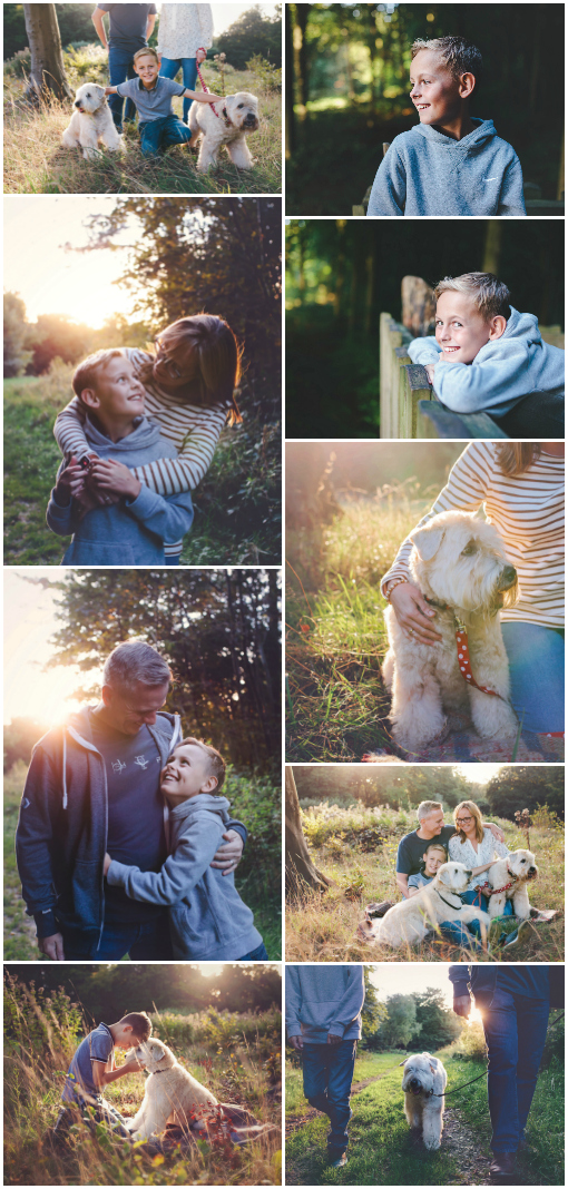 Collage of family dog walking photo shoot by Moira Lizzie Photography