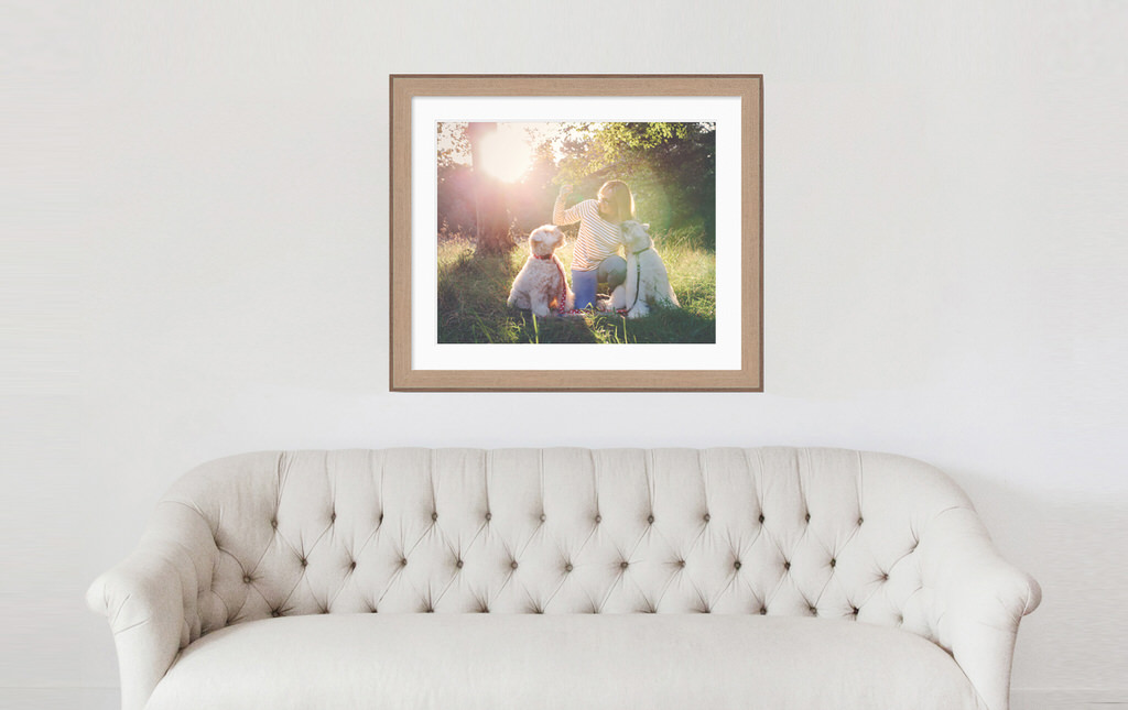 Wall display featuring image of family dog walking photo shoot taken by Moira Lizzie Photography