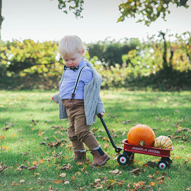 Toddler pulling cart with pumpkins by Moira Lizzie Photography